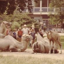 1983 Knechtsteden__47