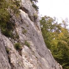 2007 Pleinfeld_95